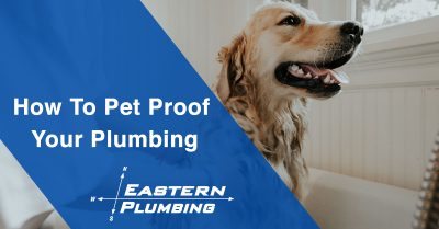 How to Pet Proof Your Plumbing